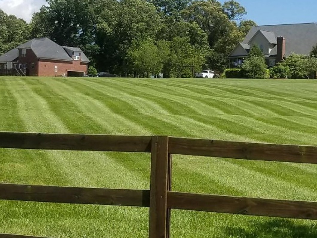 Expert lawn care and landscaping services you can count on